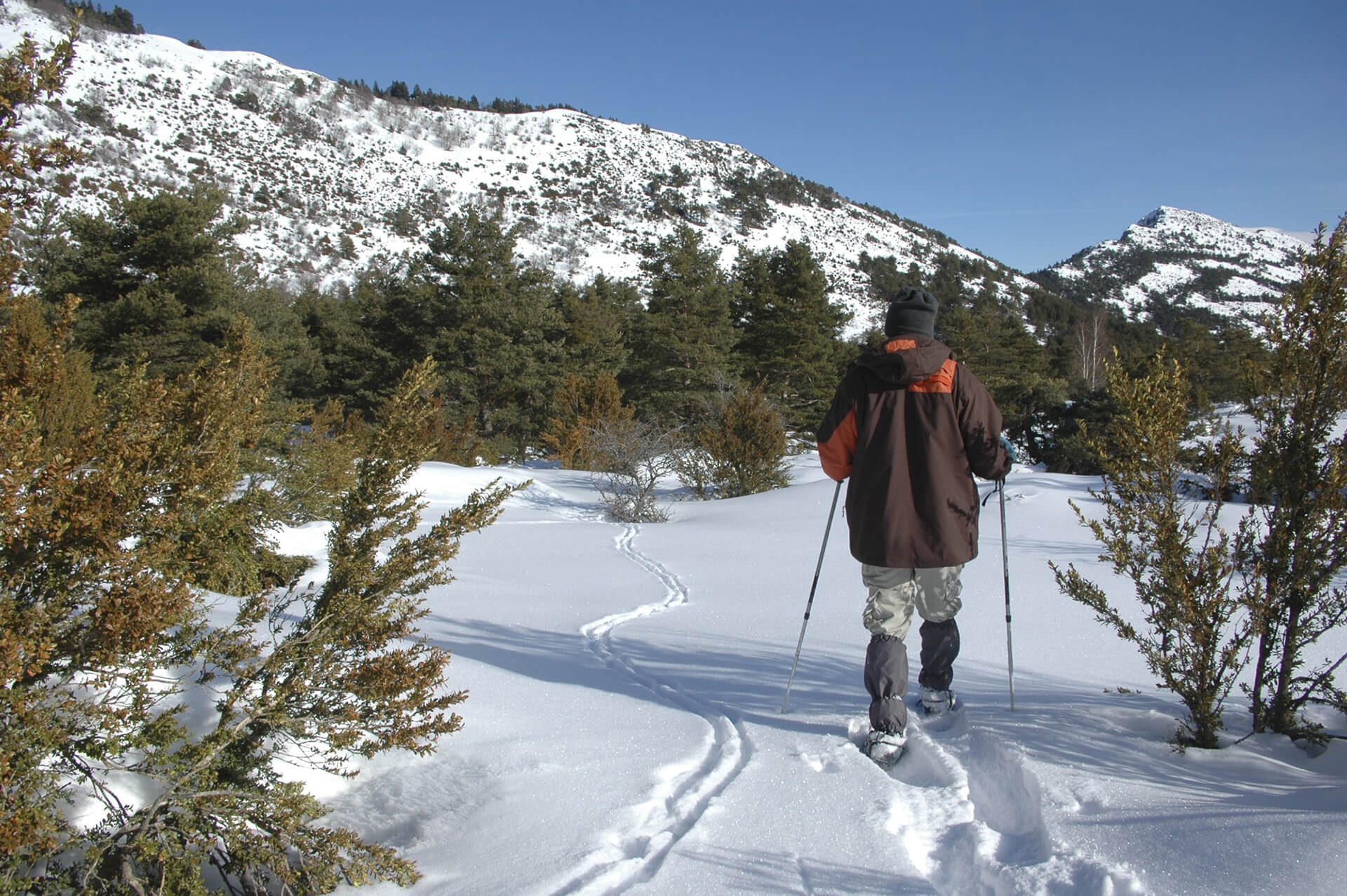 Guided snow raquets trek
