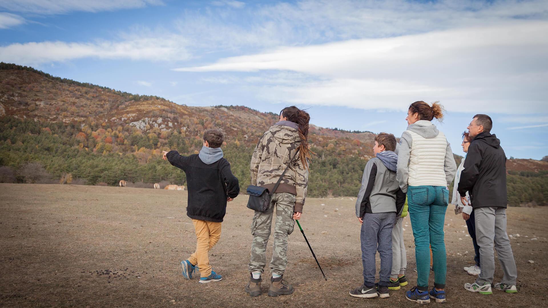 Guided safari trek